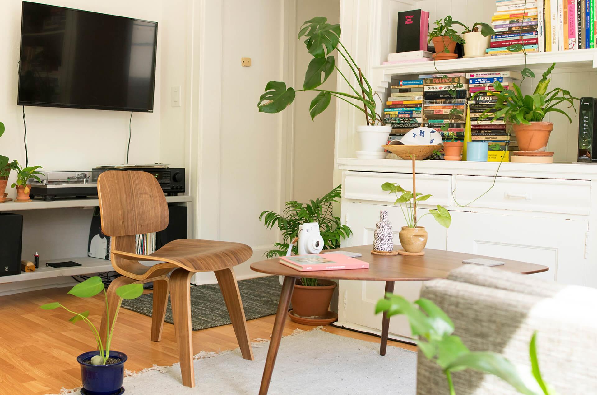 Pregatirea interiorului pentru fotografii - plante naturale